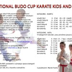 Budo cup 2019